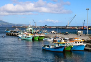 Vietnam takes action to combat illicit fishing activities