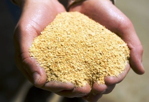 Soybean imports will see an 11 per cent rise in Thailand