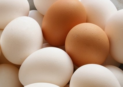 Australian_egg_consumption_surges_7_per_cent