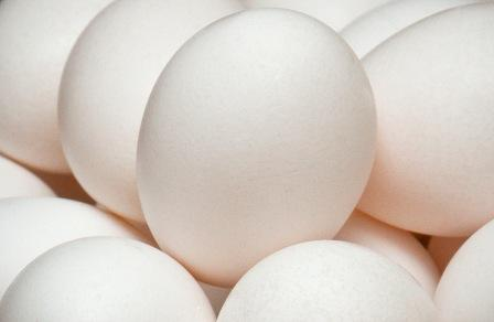 carbon footprint of an egg poultry Feeding chickens, and the energy used on poultry farms, adds to the carbon  footprint of eggs but as far as animal proteins go, eggs' carbon.