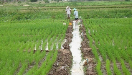 IFAD_will_provide_US17.5_million_loan_and_US17.5mn_grant_to_Cambodia