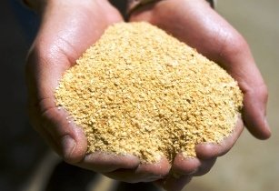 Soybean meal-United Soybean Board flickr