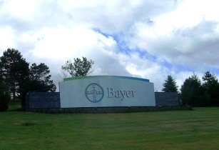 bayer-crop
