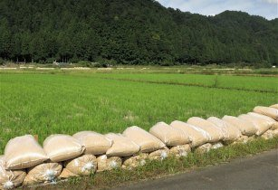 japanese agriculture fareasternagriculture